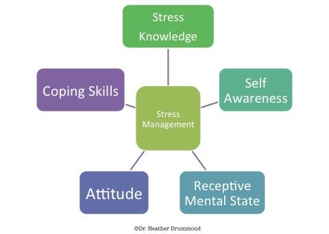 stress-management-model